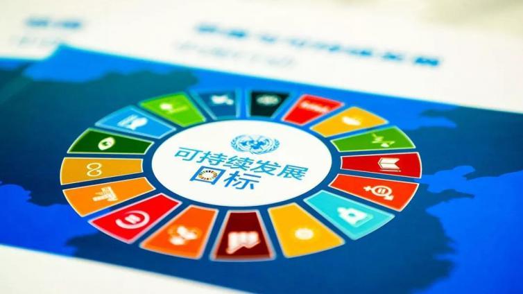联合国发布可持续发展目标四年成绩单