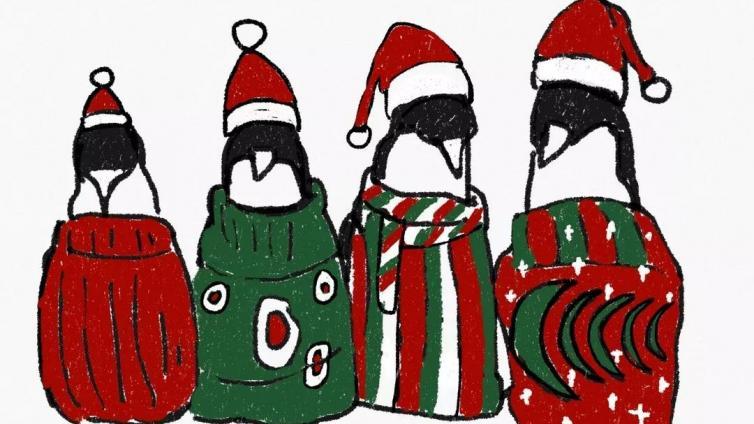 企鹅也穿毛衣吗?