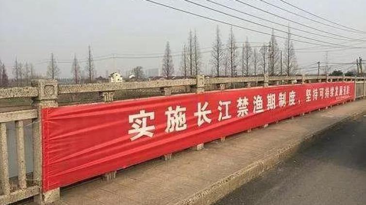 十年禁渔令,对长江,对我们意味着什么?